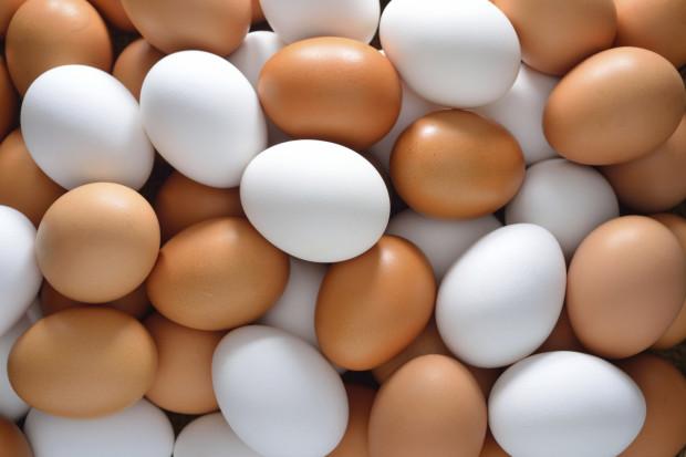 Куриные яйца в России снова подешевели