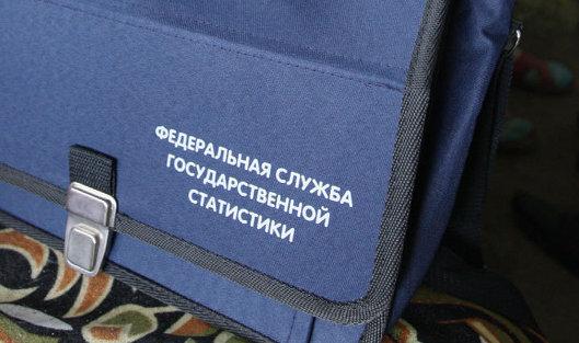 Рост производства мяса в РФ составил в январе-апреле 5% — Росстат